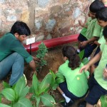 Tree plantation drive during Founder's Week
